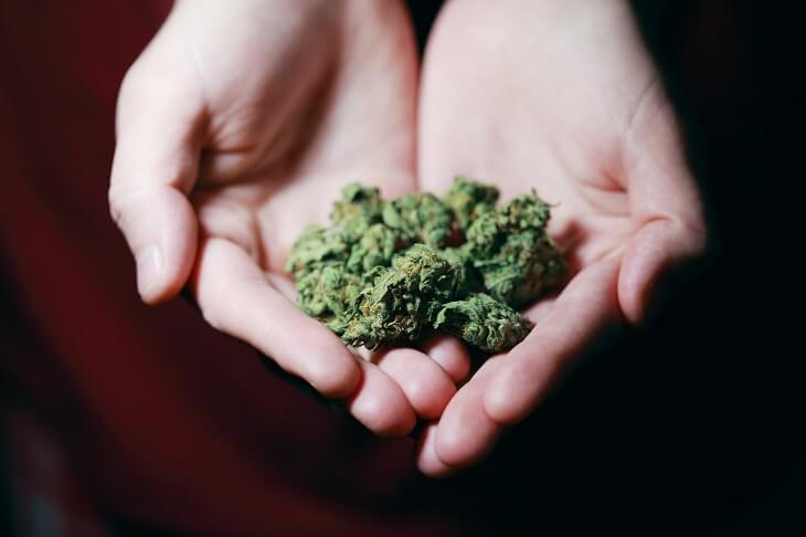 marijuana, cocaine