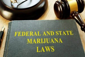 State medical Marijuana laws