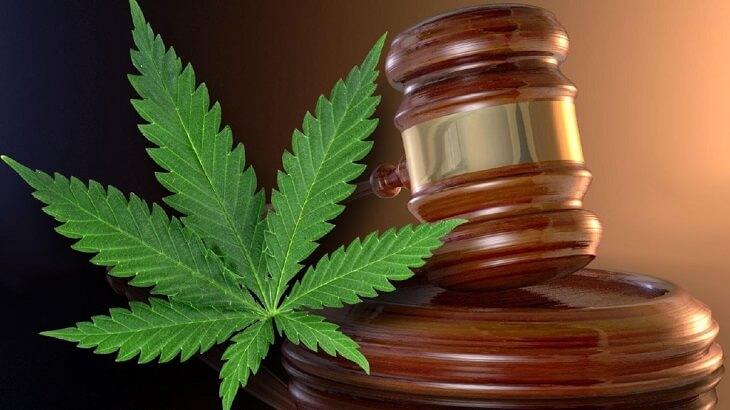 Kamala Harris & Cannabis Reforms