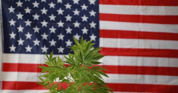 Marijuana Legalization and Decriminalization