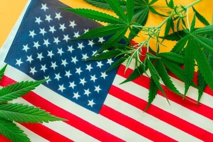 President Joe Biden marijuana law policy