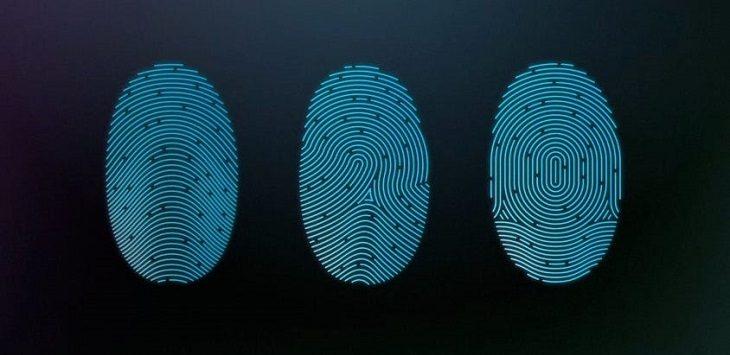 Types of fingerprints in humankind